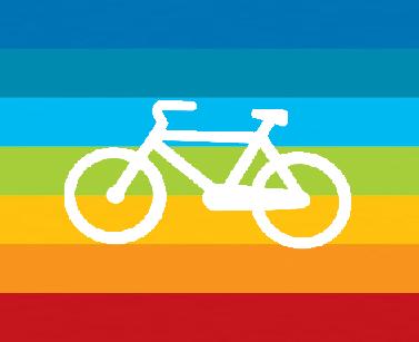bicipace