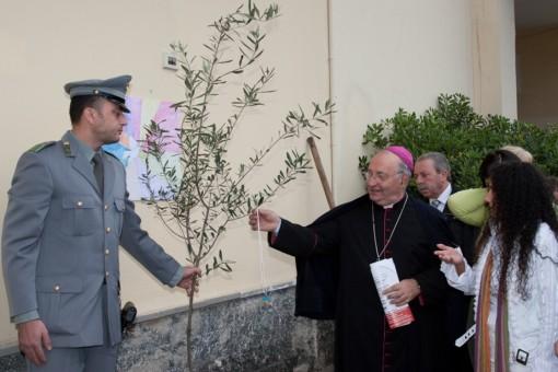 Albero della Pace 3 piantato al 4 Circolo