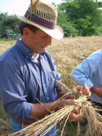 """S. Potito Sannitico(Ce)- 30 Giugno e 1 Luglio 2012 la 5^ Ed.ne di """"MietogranO  & MangiosanO"""" con tante macchine agricole d'epoca"""