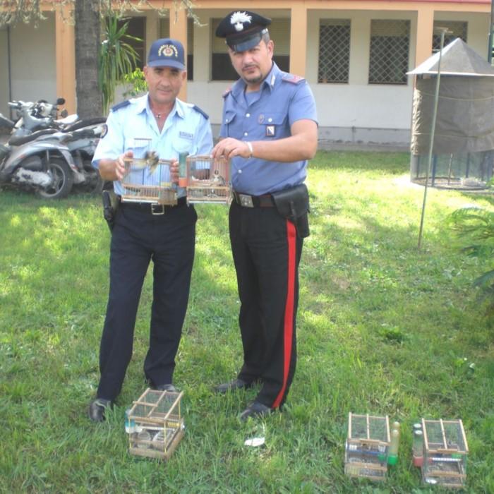 Afragola na carabinieri denunciano bracconiere per for Ad arredamenti afragola