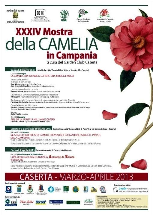 locandina camelia 2013