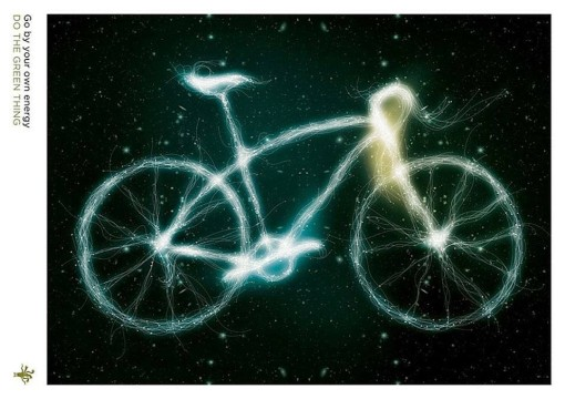 bici sotto le stelle alife