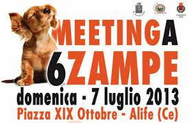 meeting alife 6 zampe