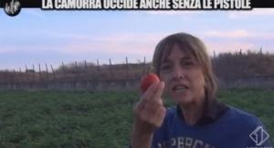 iene pomodori