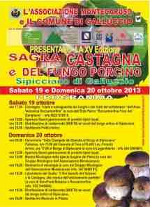 VOL_Sipicciano Castagna 2013