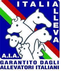 Italia alleva