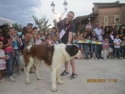 foto esp. canina