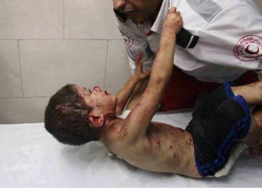 bimbo palestina